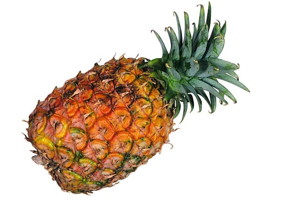 Pineapple Waste Won't Be Wasted