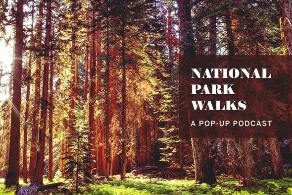 National Park Nature Walks, Episode 5: A Northwoods Voyage