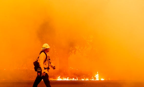 The Top Five Climate Stories of 2020