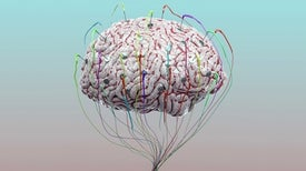 Brain Stimulation Partly Awakens Patient after 15 Years in Vegetative State