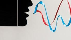 The Bilingual Advantage: Second Language Increases Cognitive Ability