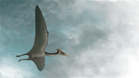 "Meet ""Dracula,"" the Largest Pterosaur Found to Date"