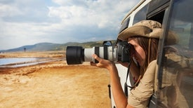 Tourist Photographs Help African Wildlife Census