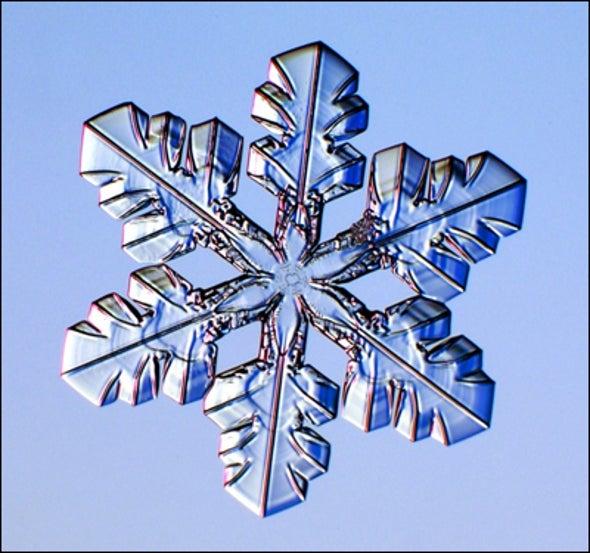 Remember Snowflakes?