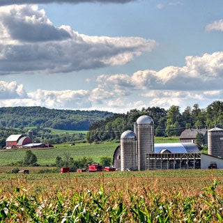 Will New Food Safety Rules Hurt Organic Farmers?