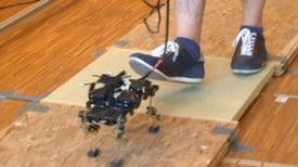 Cheetah robot hits the ground running