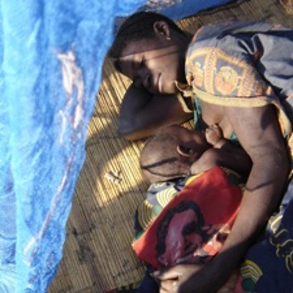 Bed Nets and Other Treatments Trump Climate Change for Malaria