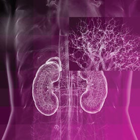 Use for 3-D Printers: Creating Internal Blood Vessels for Kidneys, Livers, Other Large Organs