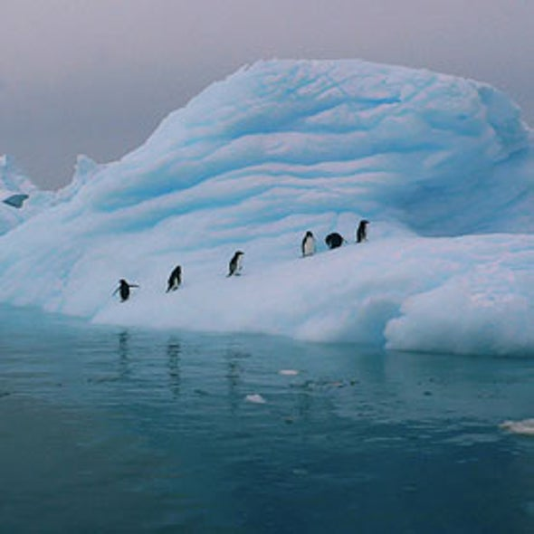 """Clean Getaway?: Antarctica Tourism Snowballs, but Is It Helping or Harming """"the Last Place on Earth?"""""""