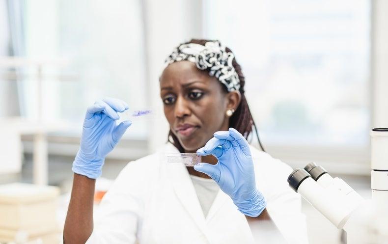 U.S. Regulators Test Organs-on-Chips for Food-Safety Monitoring