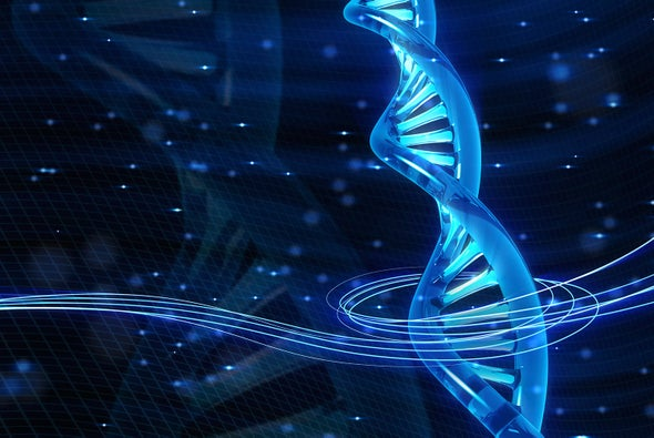 Mirror-Image Enzyme Copies Looking-Glass DNA