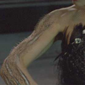 Natalie Portman's character in Black Swan sprouts feathers on her arm during the final performance.