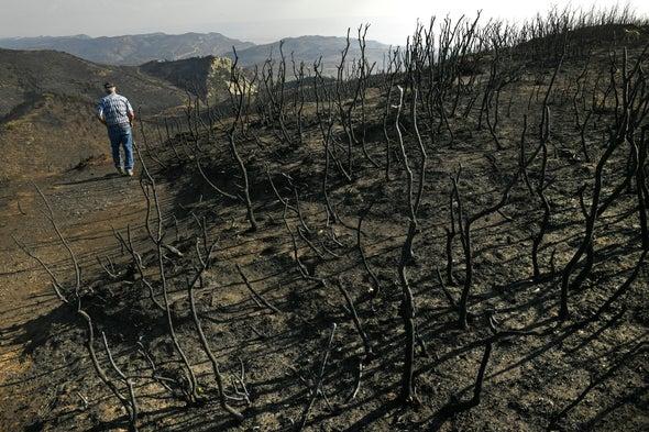 How Record-Smashing Heat Ushered in Western Infernos