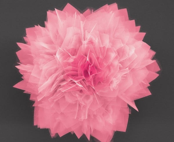 """Nanoflower"" Design May Improve Solar Cells"