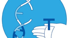 Treating Tourette's: Histamine Gene May Be Behind Some Tic Disorders
