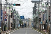 4 Years after the Meltdown, Investigating Fukushima's Ecological Toll