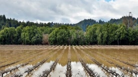 Atmospheric River Could Trigger Big California Mudslides
