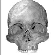 Skull Study Complicates Origins of First Americans