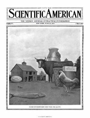 June 28, 1913