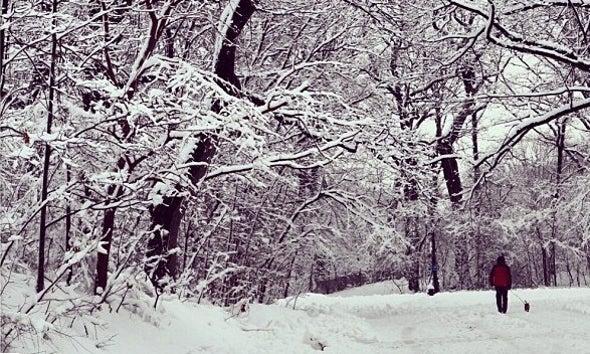 Winter Brings Fresh Round of Snow to U.S. Northeast