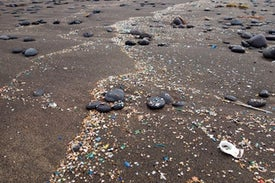 Microplastics Pollution Is Everywhere. Is It Harmful?