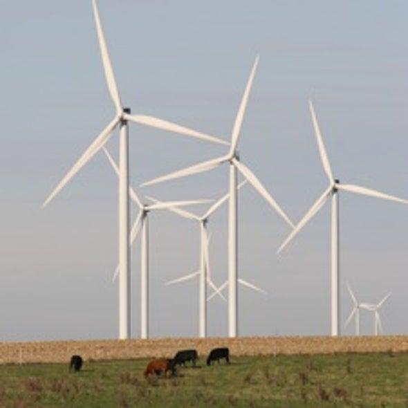 Will Politics Slow the Wind?
