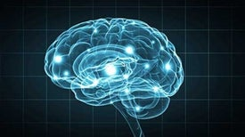 Injectable Probes Could Transform Brain Monitoring