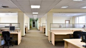 Three Ways to Green Up Your Office on the Cheap