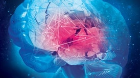 Light-Sensitive Neurons Reveal the Brain's Secrets