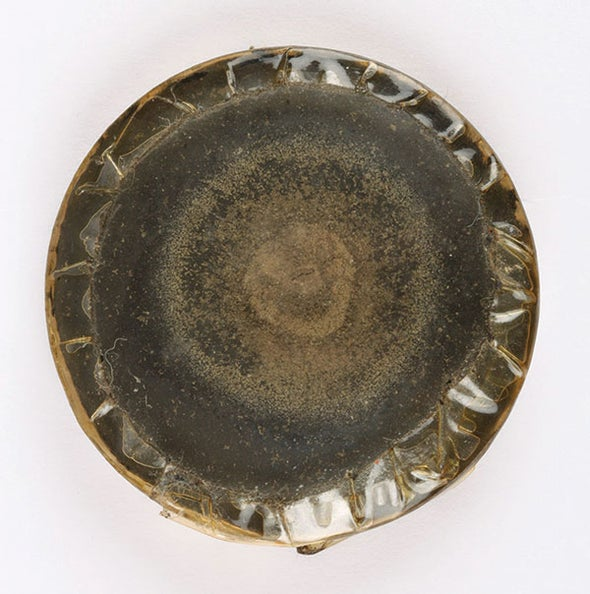 Fleming's Original Penicillin Culture Sold at Auction