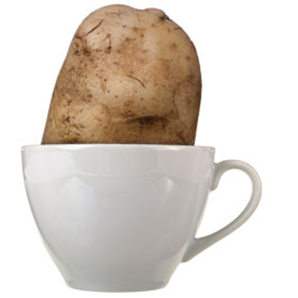 "A Coffee Sleuth Delves into the Mystery of ""Potato Taste"""