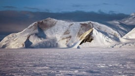 When Earth Was a Snowball: Global Glaciers May Have Sparked Evolutionary Burst