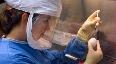 Bio-<em>Un</em>safety Level 3: Could the Next Lab Accident Result in a Pandemic?