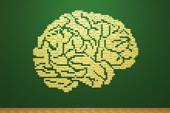 What Is the Memory Capacity of the Human Brain?