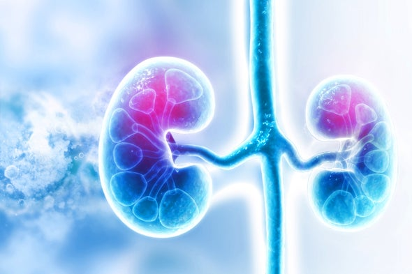 World's First HIV-to-HIV Kidney Transplant with Living Donor Performed Successfully