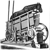 Horse Power: