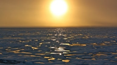 Arctic Sea Ice Rebounds, but Not Recovering