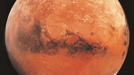 Crater Bottoms Could Be Cradles of Martian Life