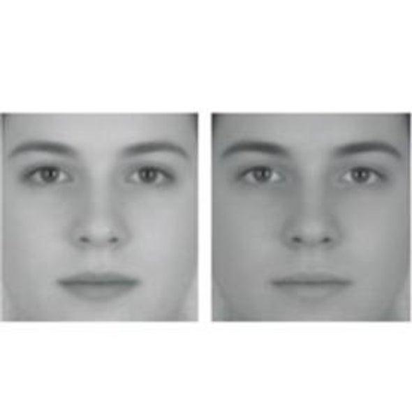 "Illusions Unmask Our ""Face Sense"""