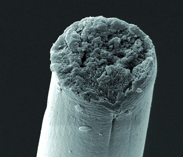 Creating Synthetic Silk from Microbes