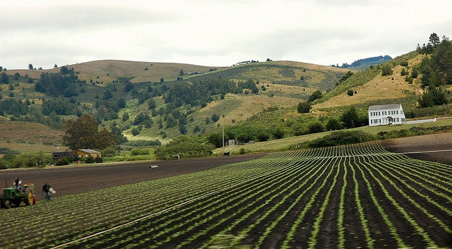 California Farmers Confront Ominous Groundwater Shortage