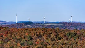 Northeast Strengthens Carbon Goals as Federal Rules Fade