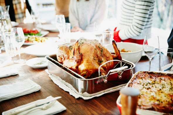 Thanksgiving Dinner May End Sooner If Guests Pass the Gravy across a Partisan Divide