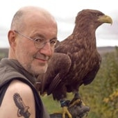HUW SPANNER, WHITE TAILED EAGLE: