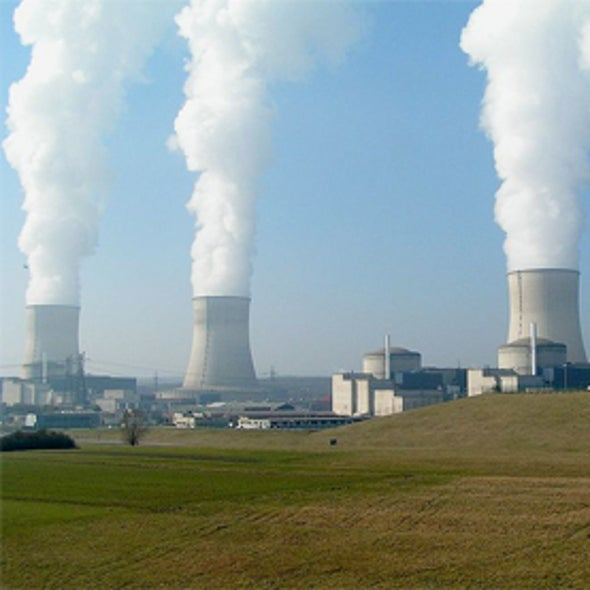 U.S. Nuclear Industry Faces Risks in Global Market