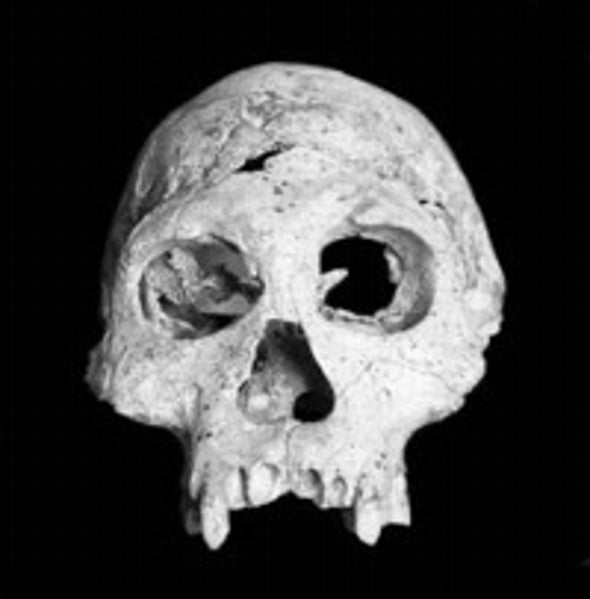 First Humans to Leave Africa Weren't Necessarily a Brainy Bunch