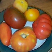 How to Grow a Better Tomato: The Case against Heirloom Tomatoes