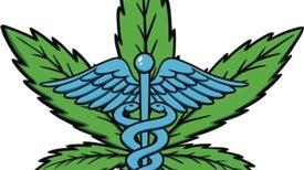 Medical Marijuana: How the Evidence Stacks Up