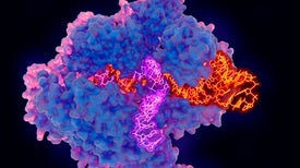 CRISPR Gene Editing May Help Scale Up Coronavirus Testing