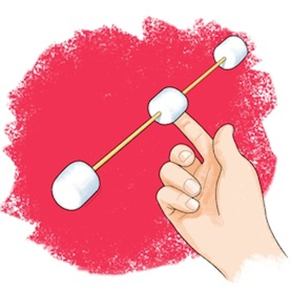 Circus Science: How to Balance Anything